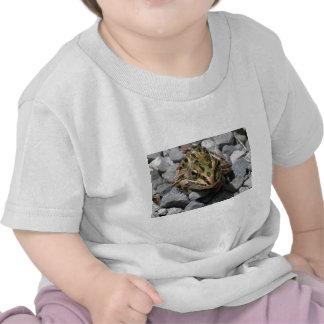 Rana de leopardo camisetas