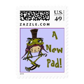 ¡Rana de los sellos un nuevo cojín! Cambio de dire