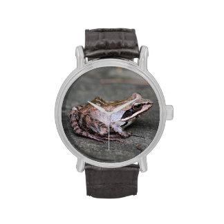 Rana de madera relojes