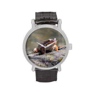 Rana de madera relojes de mano