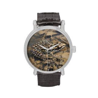 Rana de Pickerel Reloj