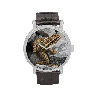 Rana de Pickerel Relojes De Pulsera