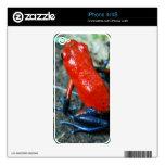 Rana del dardo del veneno de la selva tropical calcomanías para el iPhone 4S