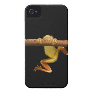 Rana del pantano (Limnonectes Leytensis) Carcasa Para iPhone 4