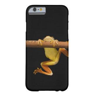 Rana del pantano (Limnonectes Leytensis) Funda Barely There iPhone 6