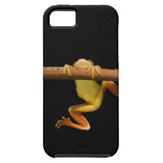Rana del pantano (Limnonectes Leytensis) Funda Para iPhone SE/5/5s