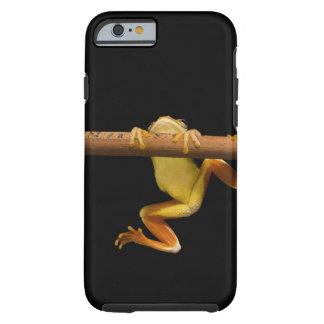 Rana del pantano (Limnonectes Leytensis) Funda Resistente iPhone 6