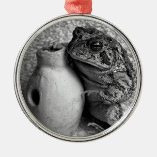 Rana del sapo que sostiene la fotografía de la ornamentos de reyes magos