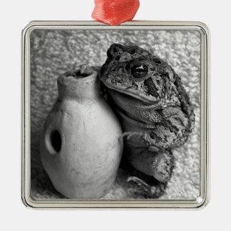 Rana del sapo que sostiene la fotografía de la adorno de reyes