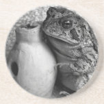 Rana del sapo que sostiene la fotografía de la per posavasos personalizados