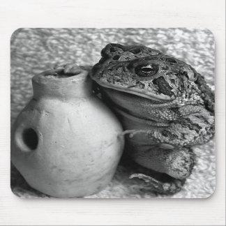 Rana del sapo que sostiene la fotografía de la per tapetes de ratón
