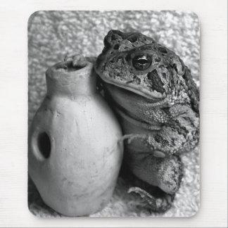 Rana del sapo que sostiene la fotografía de la per mousepads