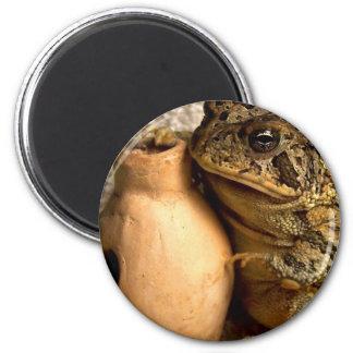 Rana del sapo que sostiene la fotografía miniatura iman de frigorífico