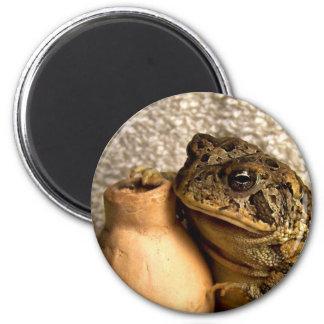 Rana del sapo que sostiene la fotografía miniatura imán de frigorífico