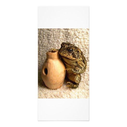 Rana del sapo que sostiene la fotografía miniatura plantillas de lonas