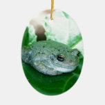 Rana del sorbo ornamento para arbol de navidad