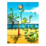 Rana del voleibol postal