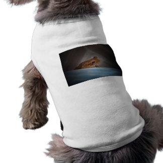 Rana detrás de la foto anfibia animal aseada azul camiseta de perro