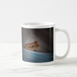 Rana detrás de la foto anfibia animal aseada azul taza de café