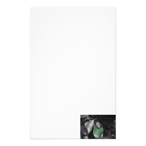 Rana en el bw verde de la hoja papeleria personalizada