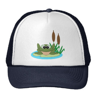 Rana en el gorra de Lilypad