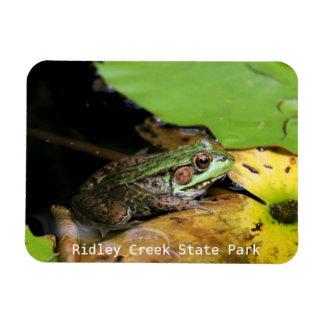 Rana en el parque de estado de la cala de Ridley Iman Flexible