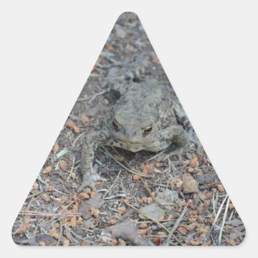 Rana en el piso del bosque pegatina triangular