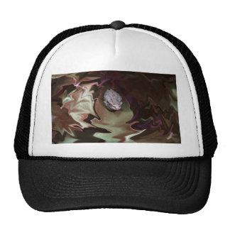 Rana en la falta de definición abstracta purpurina gorras