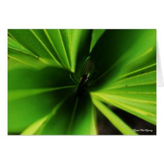 rana en planta tarjeta de felicitación