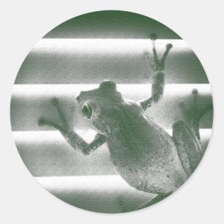 rana en reptil anfibio fresco del bosquejo verde pegatina redonda