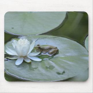 Rana en una charca de Lotus Mousepad Tapetes De Ratones