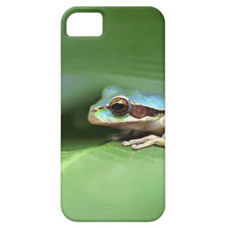 Rana enmascarada del charco iPhone 5 carcasa