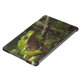 Rana gigante Phyllomedusa de la hoja bicolor) Funda Para iPad Air