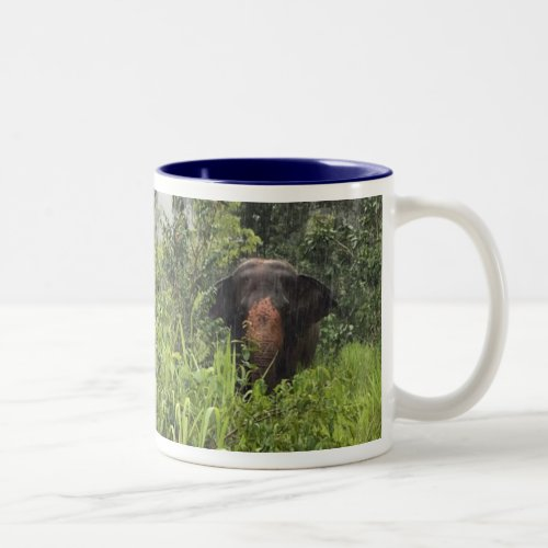 Rana in the Rain Mug