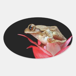 Rana linda en los pegatinas rojos de la foto de la pegatina ovalada