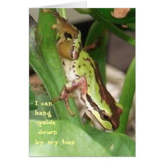 Rana manchada en la planta de la pimienta tarjeta de felicitación