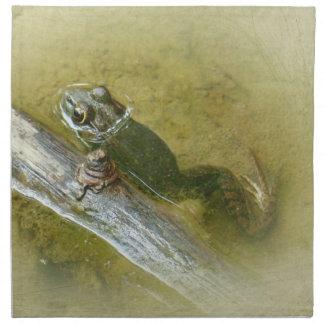 Rana mugidora americana - catesbeiana del Rana Servilleta Imprimida