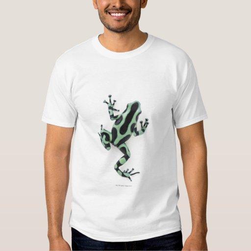 Rana negra y verde 2 del dardo del veneno poleras