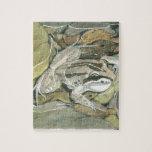 Rana rayada del pantano puzzle con fotos