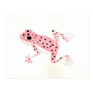Rana roja tarjetas postales