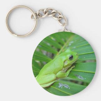Rana sincera verde linda en la hoja de la palma llavero personalizado