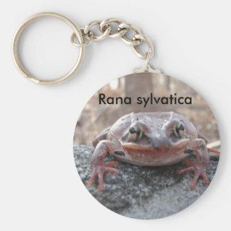 Rana sylvatica or wood frog wildlife keychain