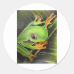 rana verde de la bella arte pegatinas redondas
