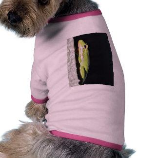 Rana verde de la rana anfibia en la pared camiseta de perrito