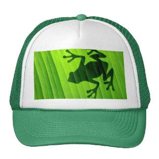 Rana- Verde Gorro De Camionero
