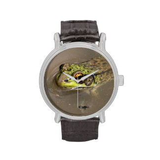 Rana verde relojes de pulsera