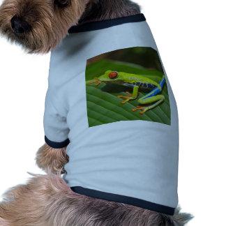 Rana verde camiseta con mangas para perro