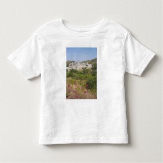 Ranakpur Jain Temple, Ranakpur, Rajasthan, India Toddler T-shirt