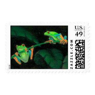 Ranas arbóreas Rojo-Observadas Timbre Postal