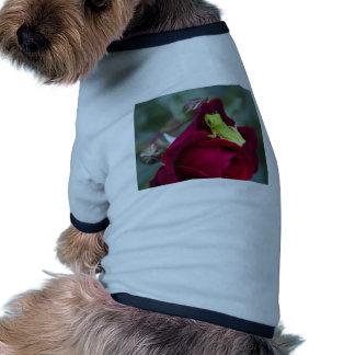 Ranas arbóreas verdes y rosas rojos camiseta de perrito